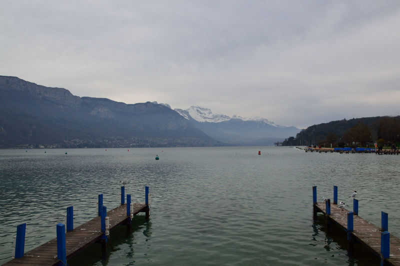 #Annecy #birds #EyeEm Nature Lover #lac D'annecy #Lake #Mountains #mountainview #Nature  #PeacefulMoment #Savoie #snowyday #Winter Calm Lake Nature Outdoors Scenics Tranquil Scene Tranquility Vacation Vacations Water Waterfront