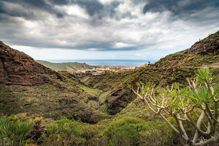 Atlantic View from Barranco del Infierno in Adeje, Tenerife Spain Adeje Atlantic Ocean EyeEm Best Shots EyeEmNewHere Barranco Del Infierno Beauty In Nature Cloud - Sky Day Environment Growth Idyllic Land Landscape Mountain Nature No People Non-urban Scene Outdoors Plant Scenics - Nature Sky Tenerife Tranquil Scene Tranquility