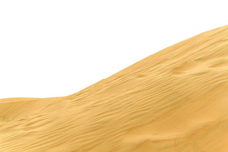 Majestic San Dunes of Thar Desert Arid Climate Beauty In Nature Clear Sky Day Desert Dry Environment Extreme Terrain Faded Landscape Nature Nature Nature Photography No People Outdoors Sand Sand Dune Scenics Texture Thar Desert Vivid Yellow