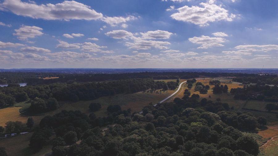 Aerial Richmond Park Aerial Aerial Photography Aerial Shot Aerial View Landscape Park Richmond Richmond Park, London Trees And Sky