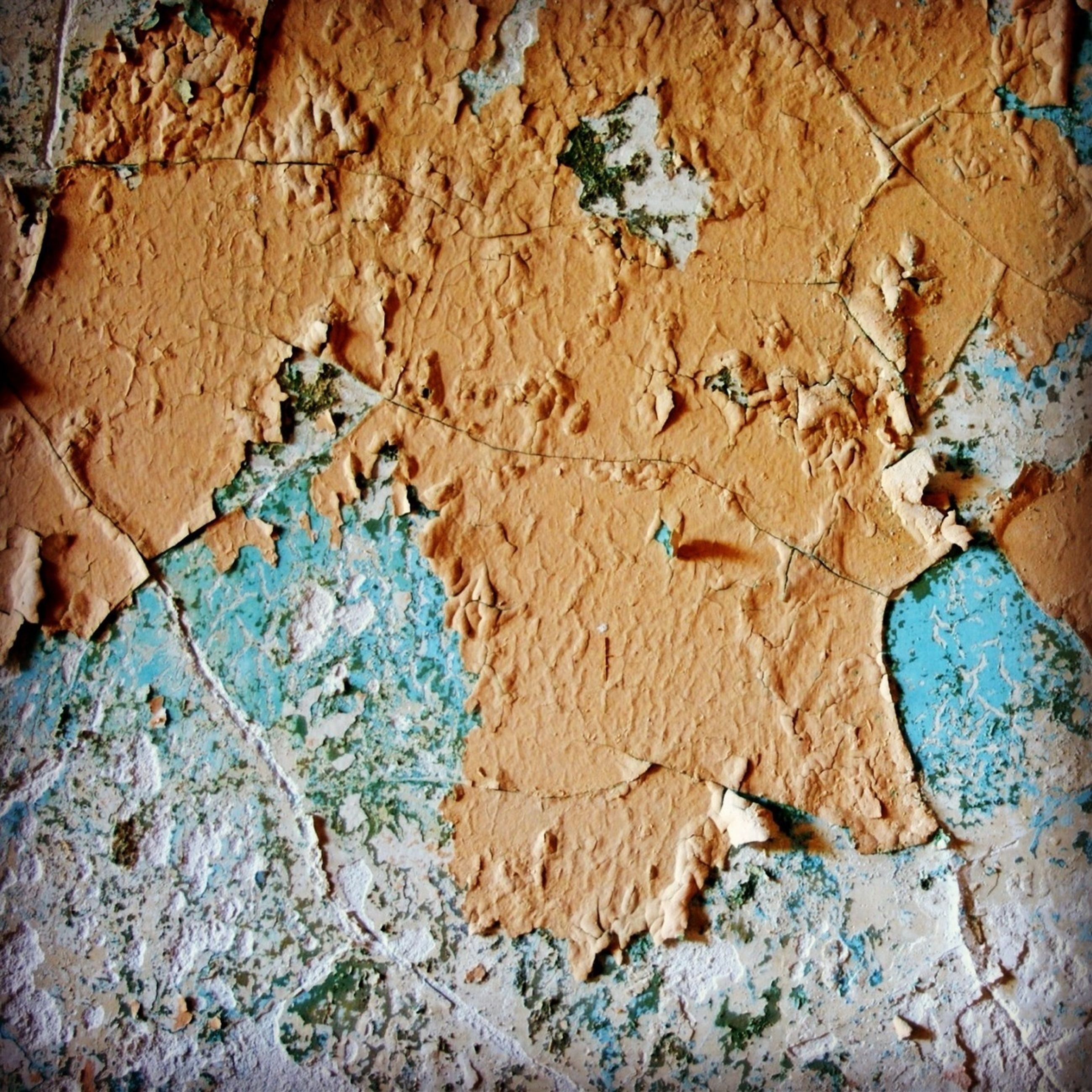 textured, full frame, close-up, backgrounds, wall - building feature, built structure, architecture, pattern, weathered, rough, high angle view, wall, day, no people, outdoors, cracked, blue, leaf, natural pattern, old