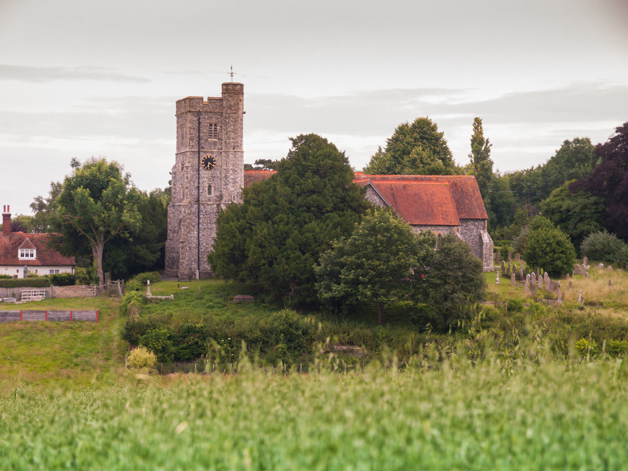 architecture, tree, history, built structure, building exterior, grass, landscape, outdoors, sky, no people, day, nature