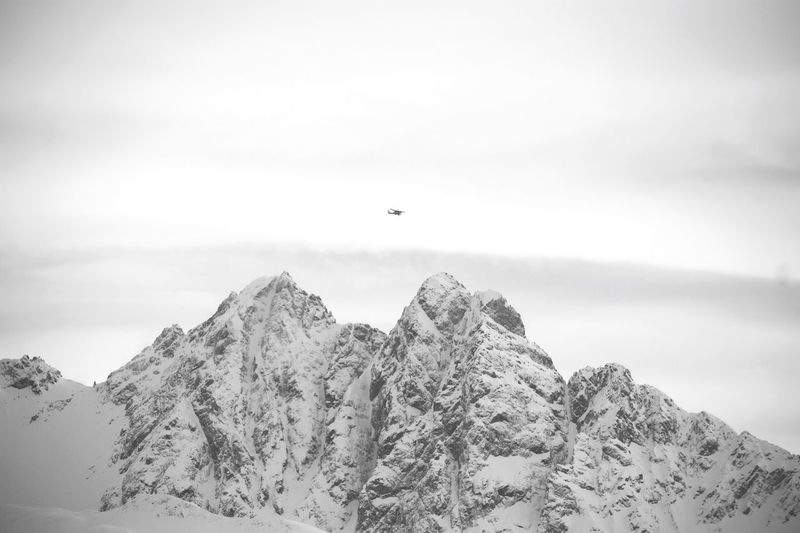 Low angle view of bird flying over mountain against sky