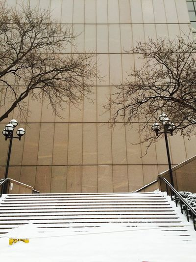 Architecture Bare Tree Branch Building Exterior Built Structure City Cold Temperature Day Low Angle View No People Outdoors Sky Snow Stairs Stairway Stairways Covered With S Stairways To Heaven Tree Winter
