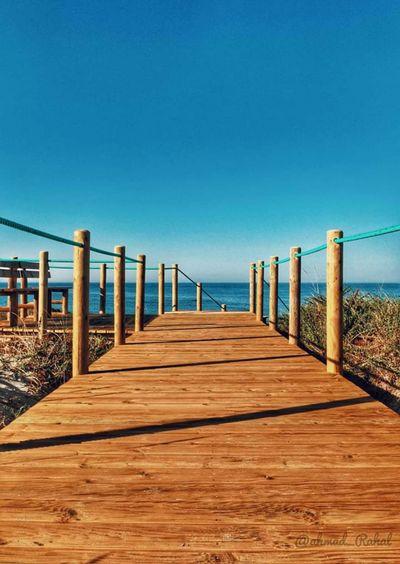 Sea Sky Wood -
