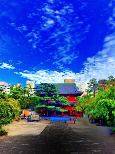 これから行って来ます。増上寺。此処がどの様な舞台になるのか?楽しみです。 Zoujouji Tokyo Temple NOU 薪能