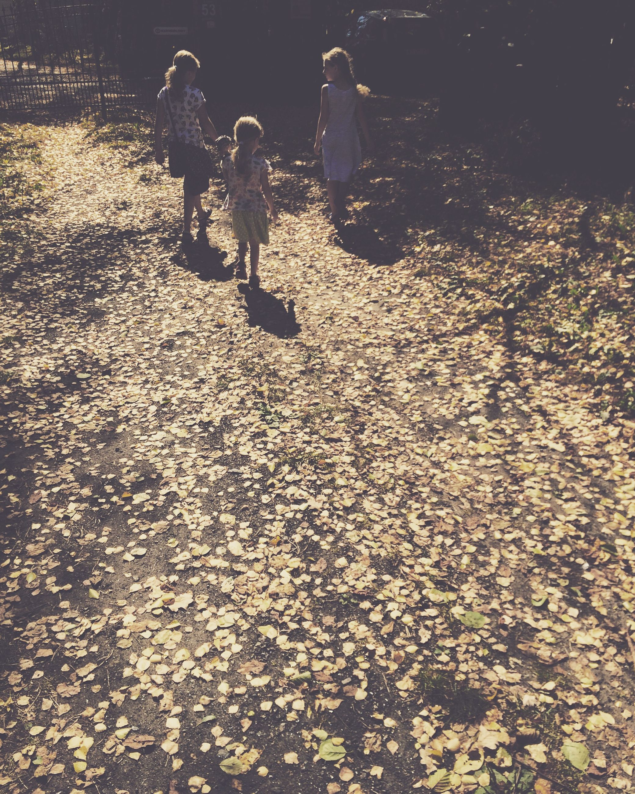 lifestyles, leisure activity, men, full length, childhood, high angle view, person, enjoyment, sunlight, girls, togetherness, casual clothing, walking, boys, outdoors, shadow, field