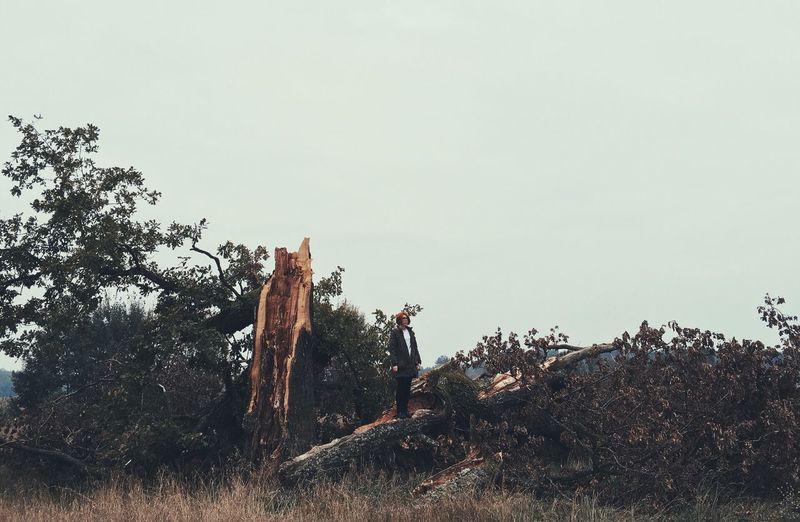 Girl Portrait Landscape Fallen Tree Fallen Tree IPhone 6s First Eyeem Photo