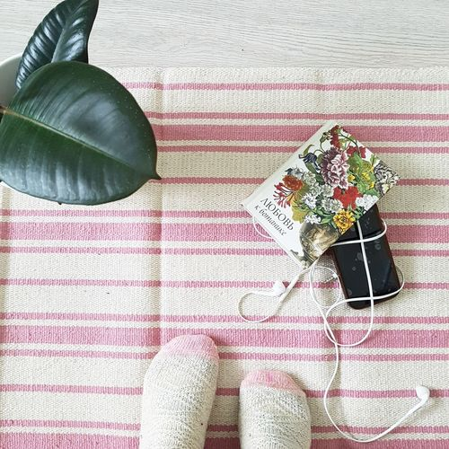 High angle view of plant on table flatlay carpet