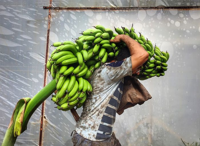 Side View Of Man Carrying Raw Bananas
