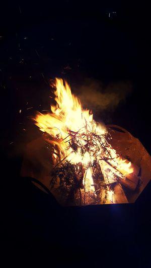 Learn & Shoot: After Dark Campsite Fire Fire