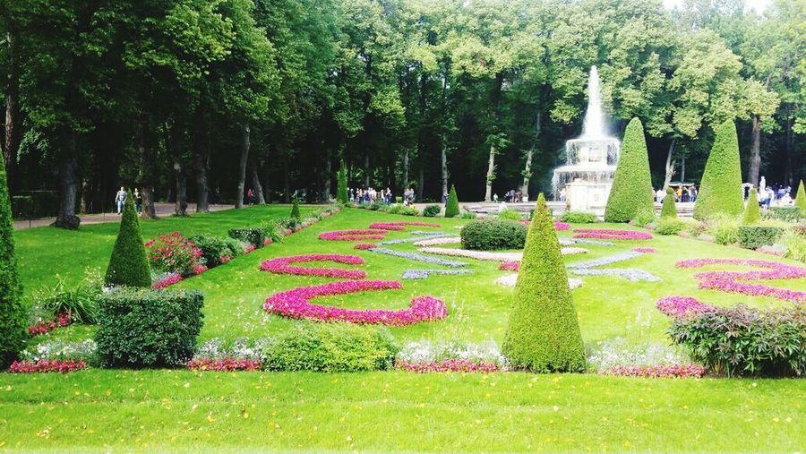 View of statue in garden