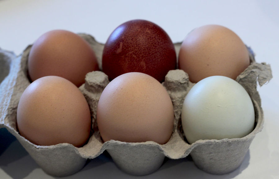 eggs Animal Egg Close-up Easter Easter Egg Egg Egg Carton Food Food And Drink Fragility Freshness Healthy Eating No People Raw Food Still Life