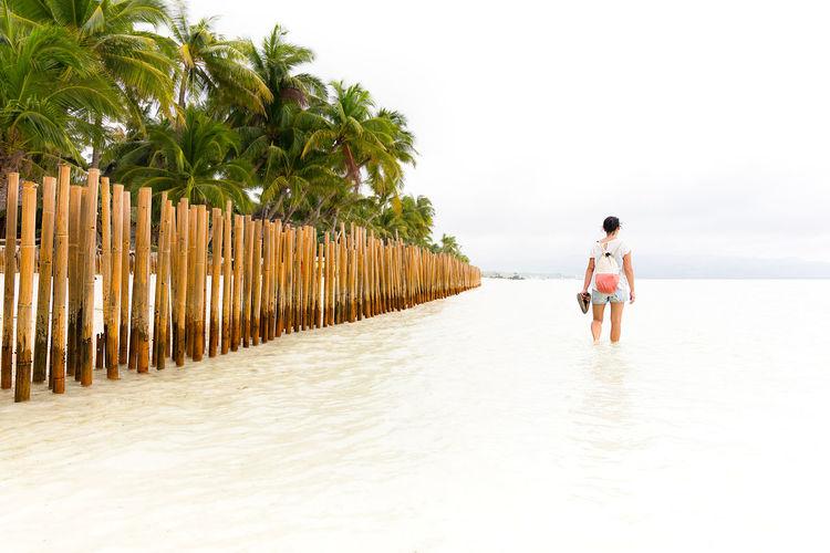 Rear View Of Woman Walking Through Sea Water
