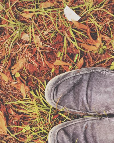Low Section Of Shoes On Grass