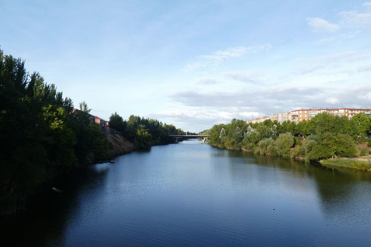 Pucela Fleuve Pisuerga Valladolid🇪🇸 Rio Tree Water Blue Reflection River Sky Landscape Cloud - Sky