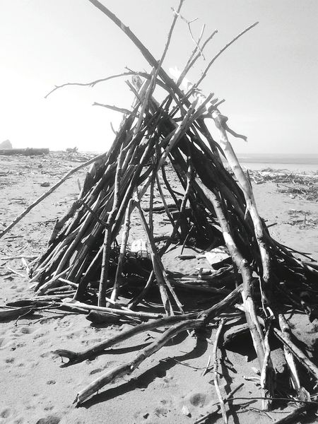 Black And White Driftwood Northern Pacific Tipi