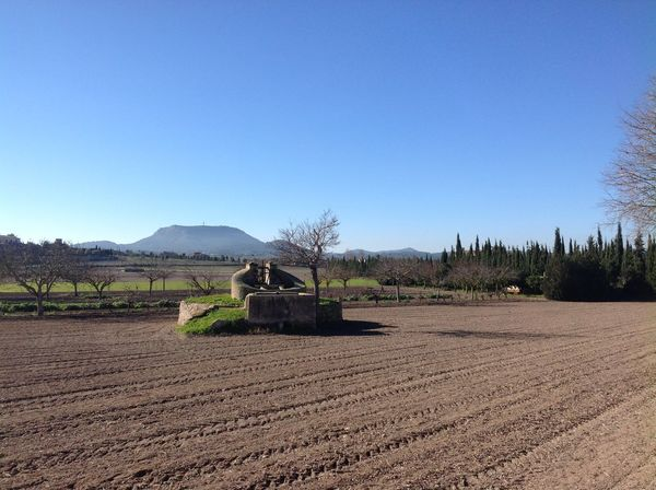Mallorca Agriculture Brunnen Clear Sky Farm Field IZoOoM Landscape Landwirtschaft Nature No People Rural Scene