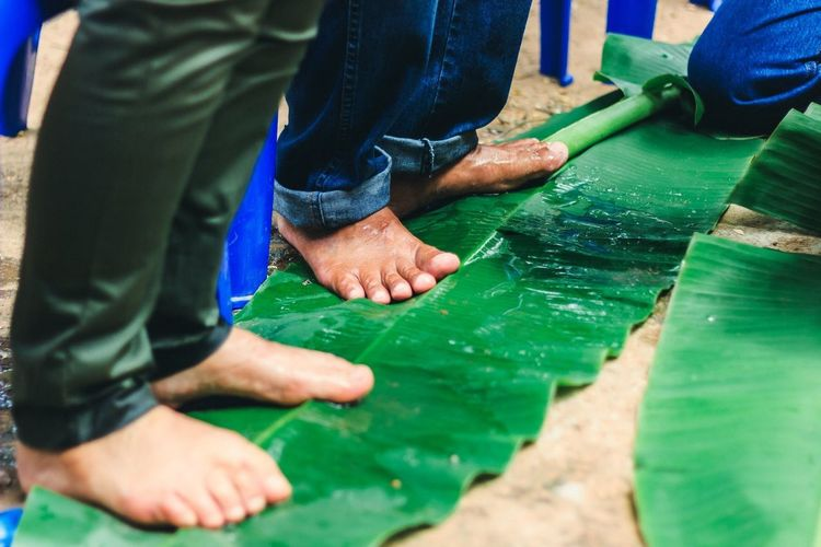 Low section of men standing on wet banana leaf outdoors