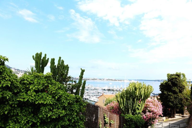 Cannes from the