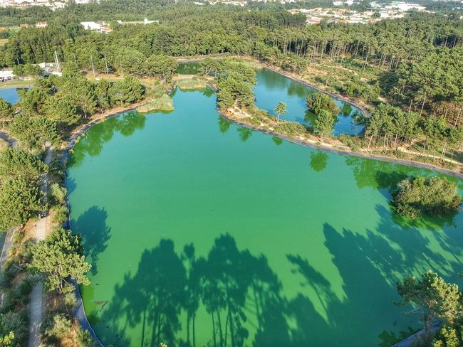 Buçaquinho Park Lake - Esmoriz, Portugal 2018 Dji Spark Dronephotography DJI X Eyeem Birdseyeview Water High Angle View Nature No People Green Color Day Beauty In Nature Plant Tranquil Scene Aerial View Land Outdoors Scenics - Nature Tranquility Sunlight Lake Landscape Reflection The Great Outdoors - 2018 EyeEm Awards