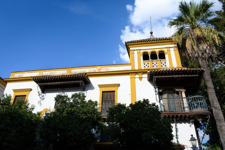 Low angle shot of historical building in Sevilla (Balcony de Rosina, Sevilla, Spain) against blue sky. Historical Building Palme Tree Sunny Architecture Building Building Exterior Buildings Day First Eyeem Photo Historic Low Angle View Outdoors Palm Tree Sky Summer Sunny Day Travel Destinations Tree