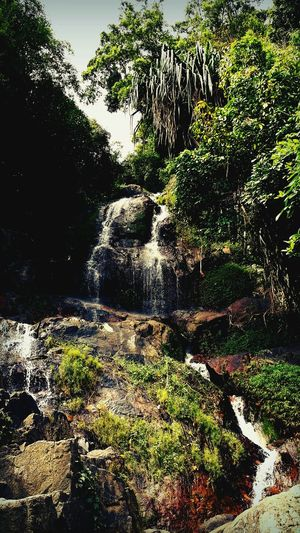 Waterfall Enjoying Nature Nature_collection Beautiful Koh Samui Thailand Rainforest Tracking Travelling
