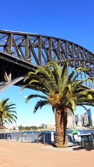 Sydney 💕