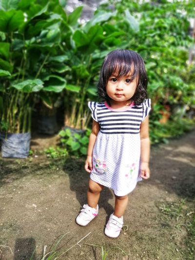 High Angle Portrait Of Cute Baby Girl Standing Against Plants