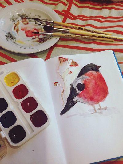 Bullfinch Birds Watercolor Art ArtWork Inspired
