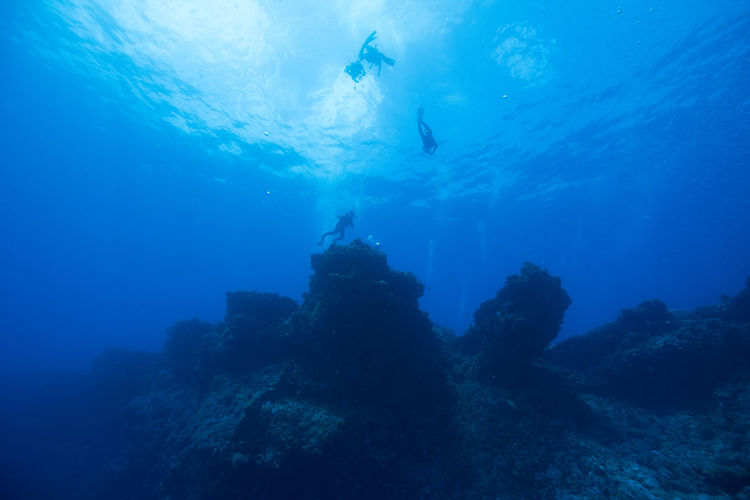 green island, Taiwan Day One Person Outdoors People Scuba Diving Sea Sea Life UnderSea Underwater Water