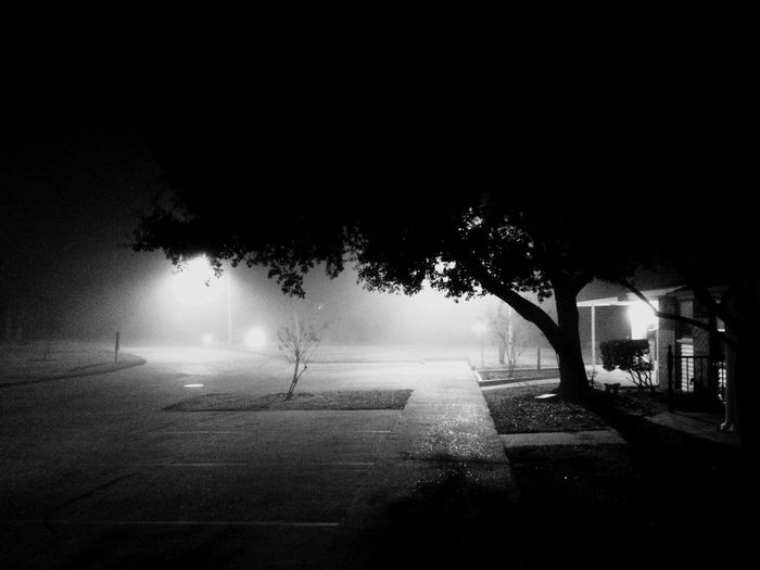 Black And White Black & White Fog Lifein409