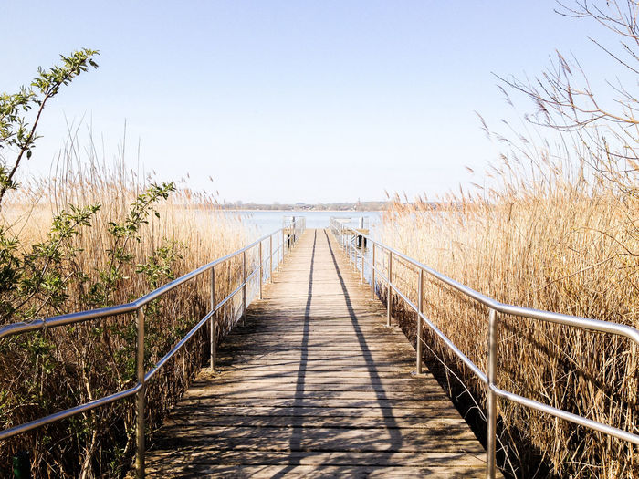 Beauty In Nature Boardwalk Bridge - Man Made Structure Clear Sky Day DMT Footbridge Iloveeverybody LSD Nature Outdoors Rabenart Railing Sunlight The Way Forward Tranquility