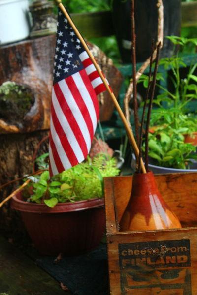 USA Flag Leaf No People Outdoors Patriotism Plant Wood - Material