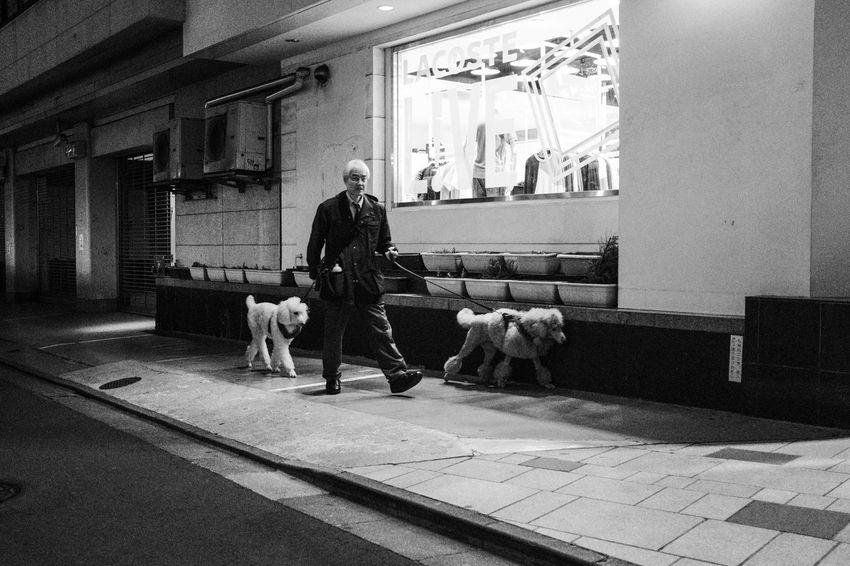 Harajuku, Tokyo, 2017 Dogs Everybodystreet Japan Monochrome Night Real Pepl Streetphotography The Street Photographer - 2017 EyeEm Awards Tokyo