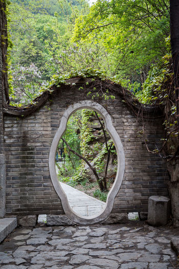 Chinese Tree Plant Architecture No People Built Structure Nature Wall Old Buildings China Street Door Doorway Chinese Architecture