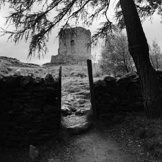 Llanberis Dolbadarncastle Monochrome Black & White