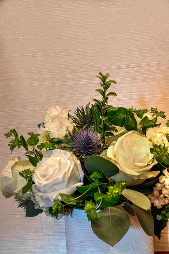 White and purple Bouquet of flowers including roses, purple thistles, and greens. Flowering Plant Flower Plant Freshness Beauty In Nature Nature Flower Head Flower Arrangement Indoors  No People Table Bouquet Bunch Of Flowers White Rose Wedding Purple Thistle Thistle Bouquet Of Flowers Backgrounds White Flowers