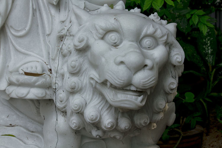 Lion head carved Lion Head Lion Head Carved Architecture Art And Craft Belief Carving Carving - Craft Product Close-up Craft Creativity Day Focus On Foreground Human Representation Lion Head Design Male Likeness Nature No People Ornate Outdoors Representation Sculpture Spirituality Statue White Color