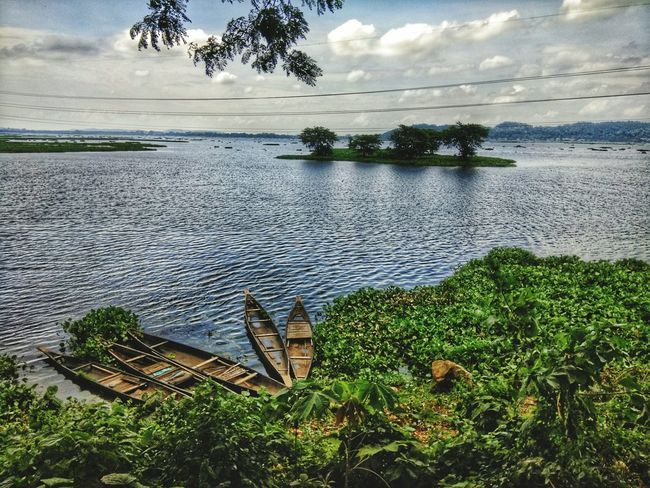 The Week On EyeEm Guwahati Birds Sanctuary