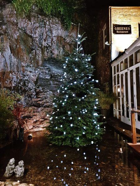 Corcaigh Ireland Ireland🍀 Cork City Waterfall Tree No People Christmas Christmas Decoration Night Outdoors Water