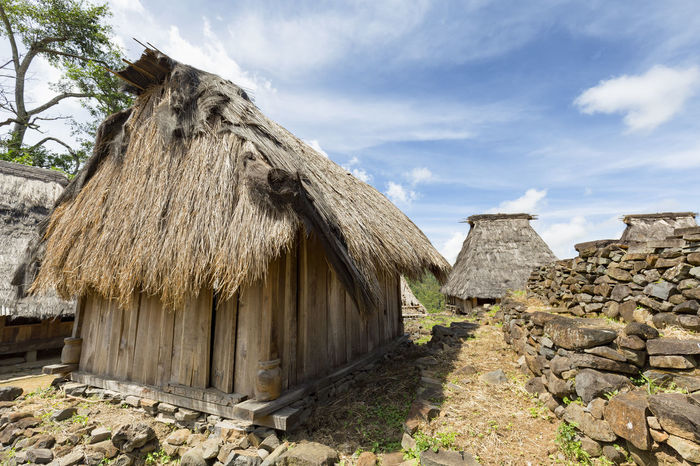 Traditional houses in the Wologai village near Kelimutu in East Nusa Tenggara, Indonesia. Coffee Houses INDONESIA Moni Rice Tourist Travel Tree Art Attraction Authentic Culture Destination East Nusa Tenggara Ethnic Hard Wood House Kelimutu Landmark Sculpture Tourism Traditonal Tribe Village Wologai