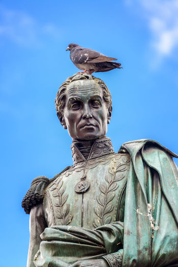 Pigeon standing on the head of a statue of Simon Bolivar in the Plaza de Bolivar in the center of Bogota, Colombia Architecture Blue Bogotá Candelaria Capital Colombia Colors Day Downtown Human Representation La Candelaria Liberator Neighborhood No People Outdoors Pigeon Plaza De Bolivar Sculpture Simón Bolívar Sky South America Statue Travel Destinations
