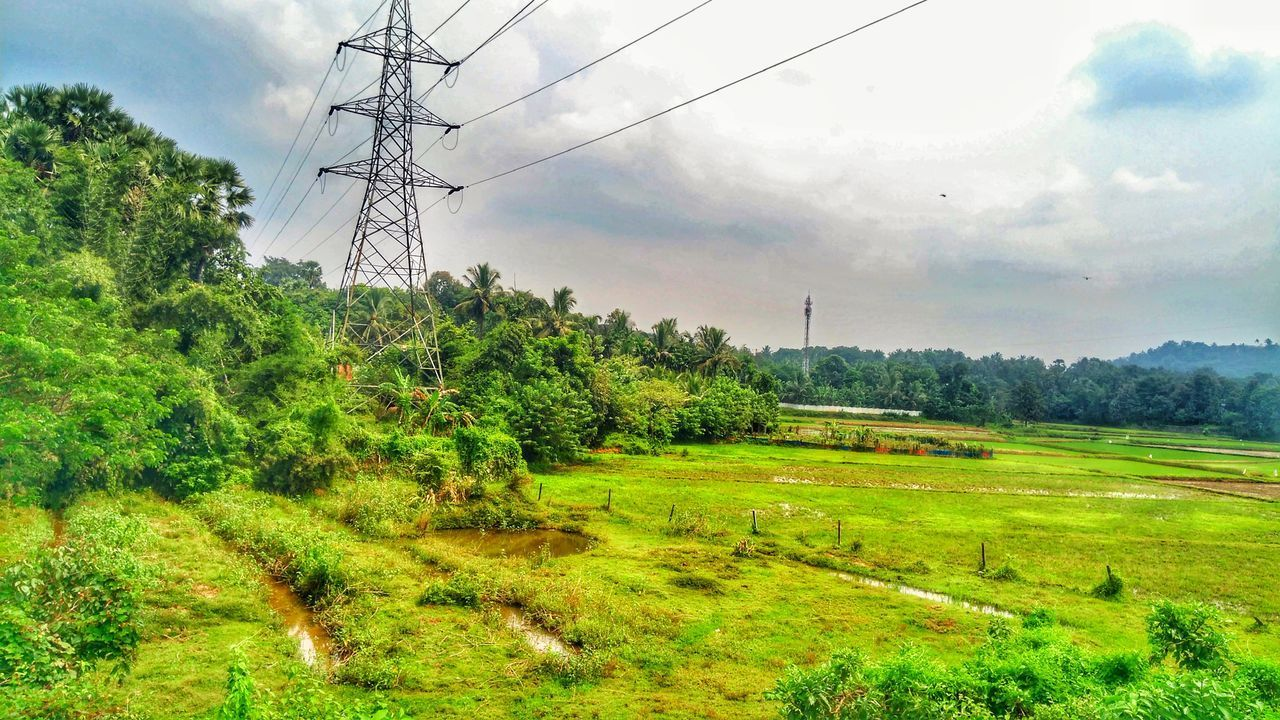 sky, electricity, technology, electricity pylon, plant, tree, cable, environment, cloud - sky, power line, fuel and power generation, nature, green color, field, landscape, power supply, land, day, grass, no people, telephone line