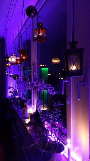 My Christmas Decoration Nofilter No Edit/no Filter Christmas Lights Lighting Equipment