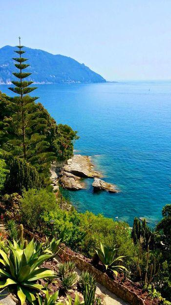Baia di Camogli. Da Pieve Ligure Genova ♥ Genova Mare Seascapes Mare ❤ Ligurian Coast. LiguriaMonAmour Liguria Di Levante Liguria Liguria,Italy Bay Liguriansea Camogli San Rocco Di Camogli Italie