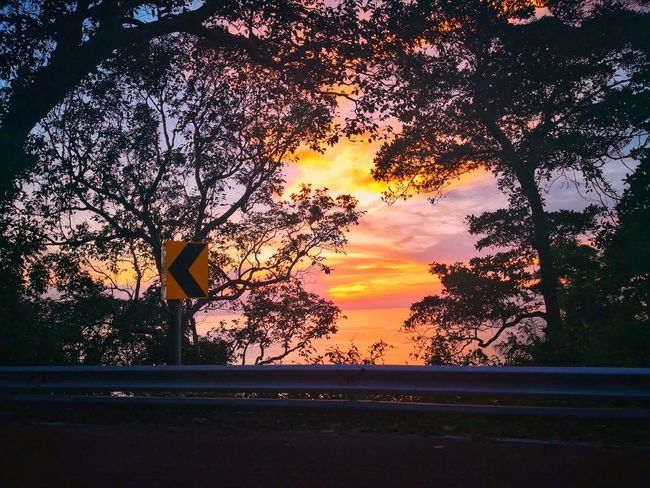 Mountain sea Tree Sunset Silhouette Window Pixelated Car Sky Close-up Cloud - Sky First Eyeem Photo