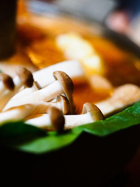 Mushrooms AsianFusion Hot Pot Food Soup Bowl Broth Enoki Mushrooms Mushroom Delicious Asian  Selective Focus Indoors