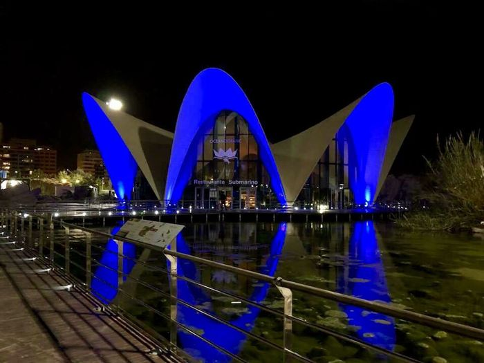 Aquárium Valencia Architecture Night Built Structure Water Illuminated Reflection Building Exterior