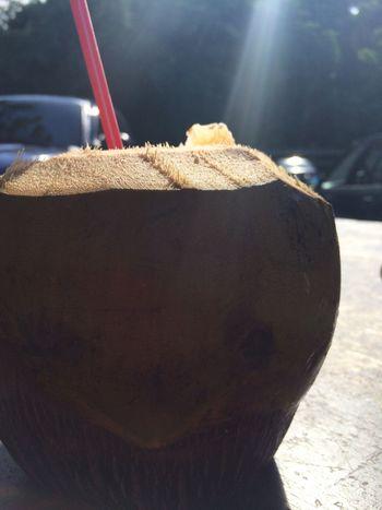 Coconut Puertorico